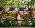 18 éléments floraux pour égayer le lieu de l'événement